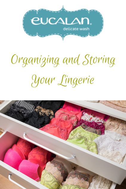 Copy of Konmari your lingerie(1)